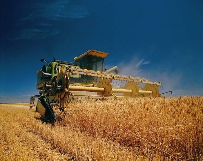 В Одесской области проблемы с техникой для сбора зерновых