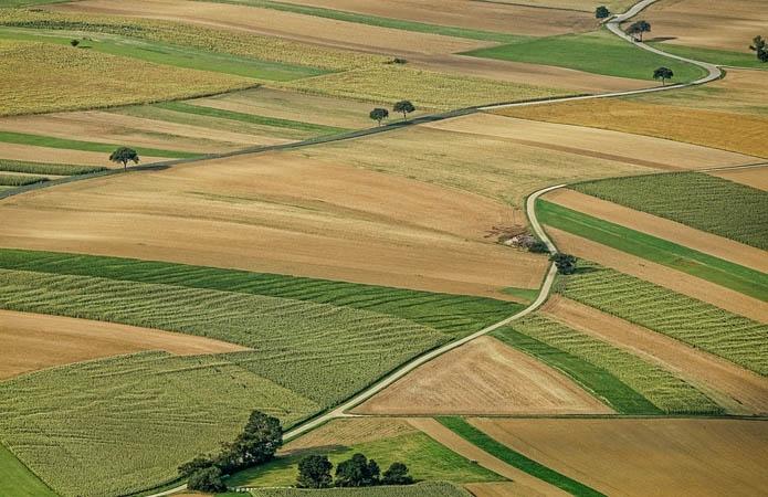 Правовая помощь одесситам: Как получить данные о земельном участке